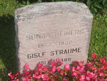 Gisle Straume net worth